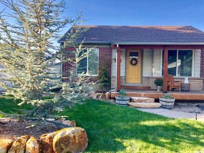 Salt Lake City Single Family Home For Sale: 1114 W Briarcliff Ave