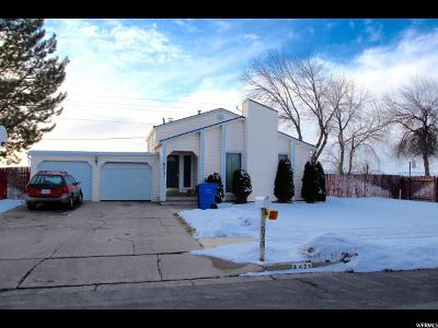 Smithfield Single Family Home For Sale: 673 N Wasatch Blvd W
