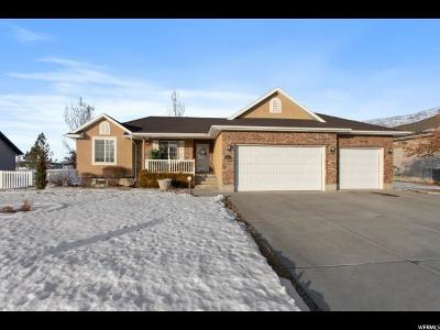 Weber County Single Family Home For Sale: 2754 W 3500 N