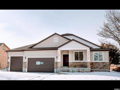 Layton Single Family Home For Sale: 462 S Angel #101