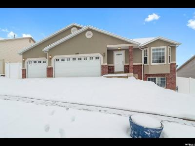 Weber County Single Family Home For Sale: 1119 Sharp Mountain Dr