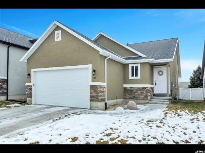 Utah County Single Family Home For Sale: 1748 E Shadow Dr S