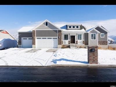 Nibley Single Family Home For Sale: 2558 S 1000 W