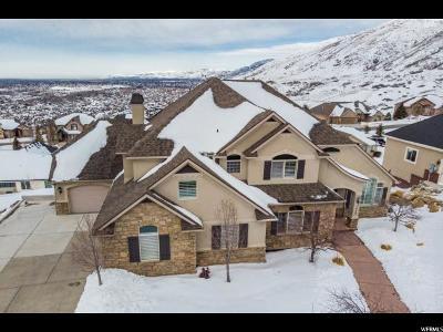 Salt Lake County Single Family Home For Sale: 1849 E Harvest Oaks Cir
