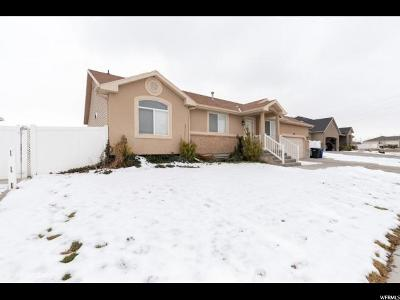 Salt Lake County Single Family Home For Sale: 7067 W Dalmatian St