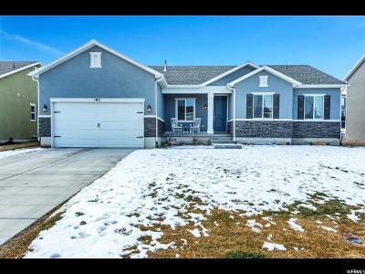 Utah County Single Family Home For Sale: 103 E Wildcat Ln