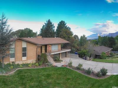 Weber County Single Family Home For Sale: 4453 S Fillmore Ave E