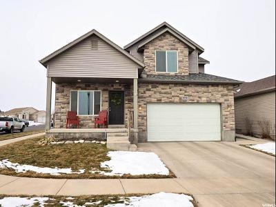 Salt Lake County Single Family Home For Sale: 8376 S Oak Run Dr
