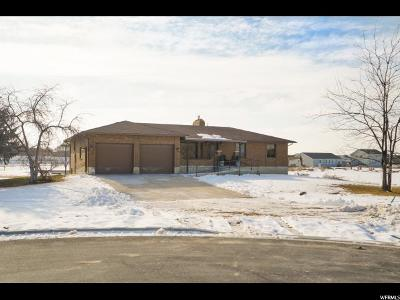 Weber County Single Family Home For Sale: 6051 S 4025 W #9