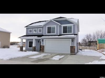 Logan Single Family Home For Sale: 1143 S 900 W