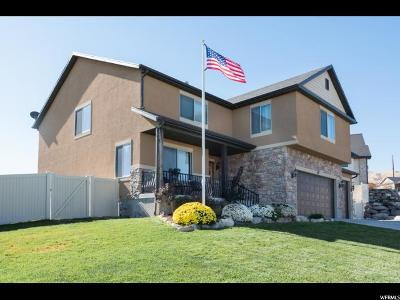 Utah County Single Family Home For Sale: 341 W Shadow Dr