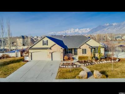 Utah County Single Family Home For Sale: 1474 W 2100 N