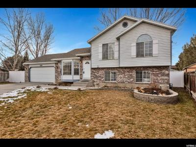 West Jordan Single Family Home For Sale: 8186 S 2470 W