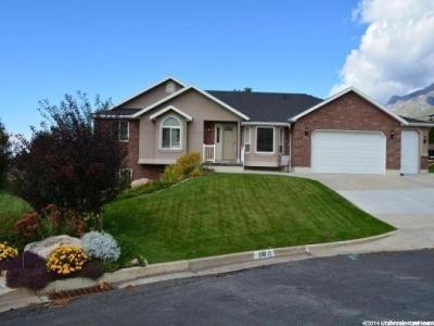 Weber County Single Family Home For Sale: 210 E 3050 N