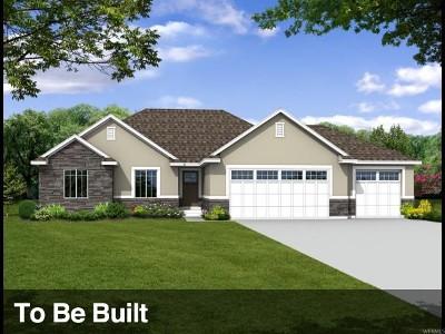 Utah County Single Family Home For Sale: 463 N Kern Ave #710