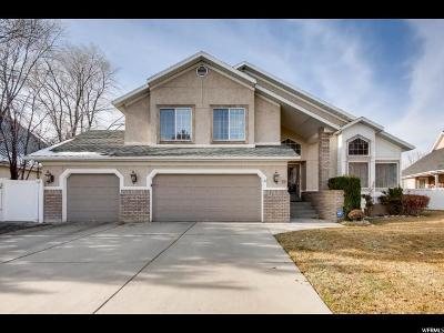 Orem Single Family Home For Sale: 19 N Palisade