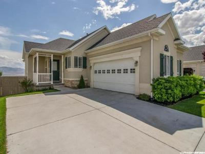 Lehi Single Family Home For Sale: 2702 Shady Hollow Loop W #-