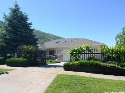 Weber County Single Family Home For Sale: 1689 E 29th St