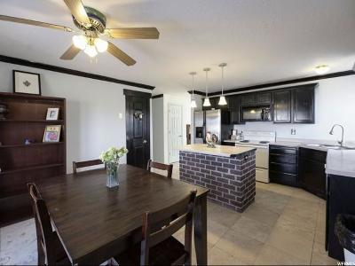 Eagle Mountain Single Family Home For Sale: 1439 Owl Lane