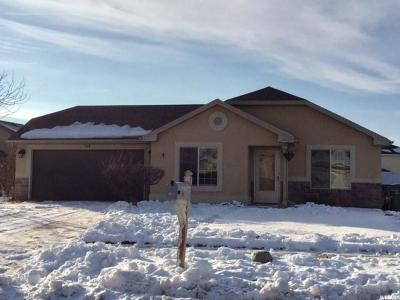 Logan Single Family Home For Sale: 739 S 1250 W