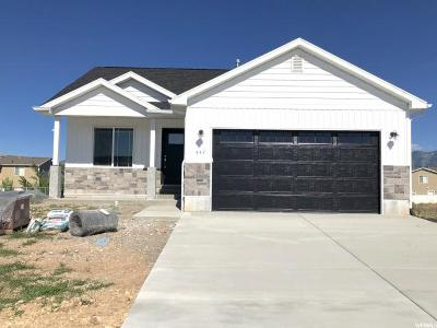 Tremonton Single Family Home For Sale: 447 S 400 W