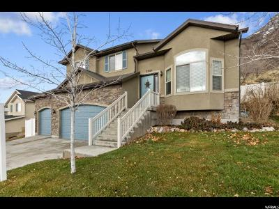 Utah County Single Family Home For Sale: 2235 S Alaska Ave E