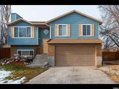 West Jordan Single Family Home For Sale: 5580 W Joshua Cir S
