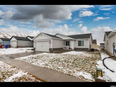 Eagle Mountain Single Family Home For Sale: 2408 E Jim Bridger Dr