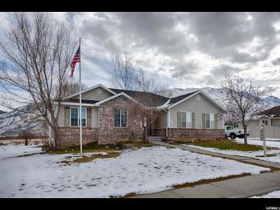 Santaquin Single Family Home For Sale: 664 N 200 E