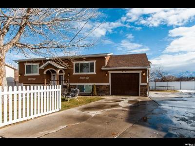 West Jordan Single Family Home For Sale: 6541 S 3795 W