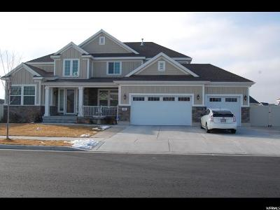 West Valley City Single Family Home For Sale: 2802 S Hackney Rd