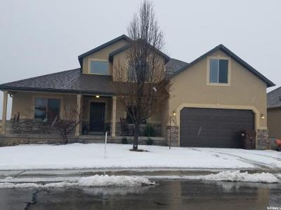 Eagle Mountain Single Family Home For Sale: 3766 E Barton Creek Dr