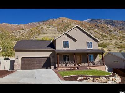 Provo Single Family Home For Sale: 2131 Alaska Ave