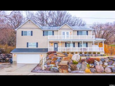 Farmington Single Family Home For Sale: 1594 N Main St W
