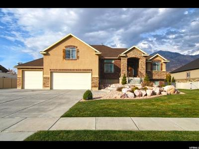 Weber County Single Family Home For Sale: 734 W 2825 N