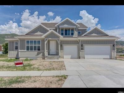 Farmington Single Family Home For Sale: 1065 S 425 W