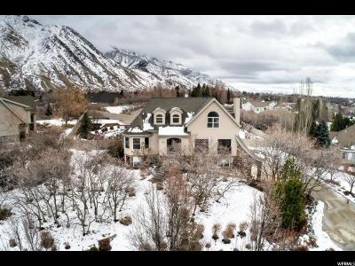 Alpine Single Family Home For Sale: 680 E Ridge Dr. N