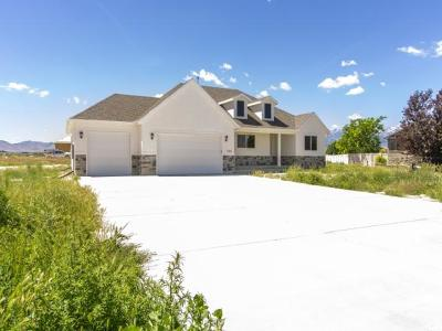 Grantsville Single Family Home For Sale: 738 E Frontier Rd #204
