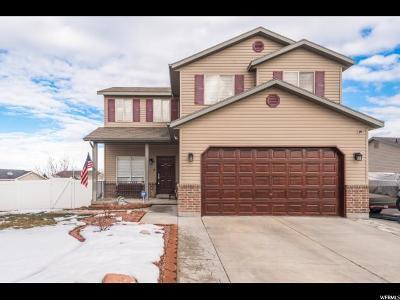 West Jordan Single Family Home For Sale: 6162 W Nellies St S