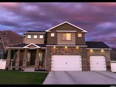 American Fork Single Family Home For Sale: 1258 N 1050 E