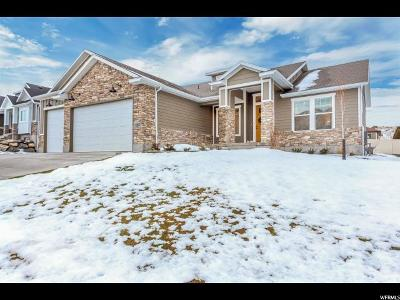 Santaquin Single Family Home For Sale: 1154 S Valley View Dr