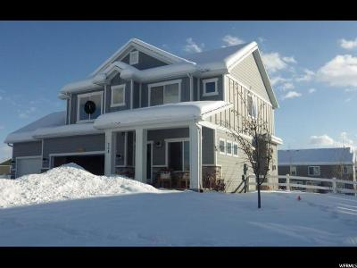 Wasatch County Single Family Home For Sale: 324 E 200 S #9