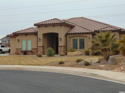 St. George Single Family Home For Sale: 2977 E 3110 S
