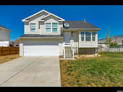 Tooele County Single Family Home For Sale: 493 E 770 N