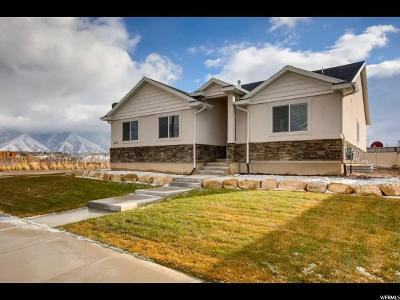 Springville Single Family Home For Sale: 609 W 1450 S