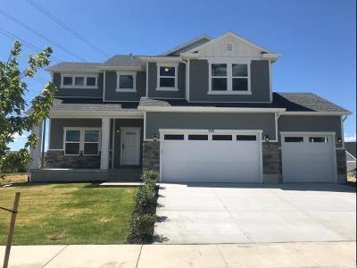 Spanish Fork Single Family Home For Sale: 719 N Slant Rd #90