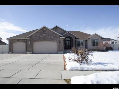 Weber County Single Family Home For Sale: 2441 N 2700 W