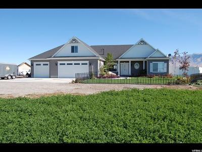 Amalga Single Family Home For Sale: 8480 N 2400 W