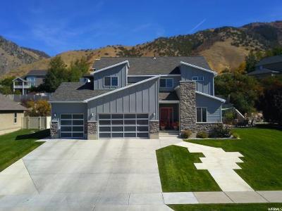 Providence Single Family Home For Sale: 1096 S Forgotten Ln