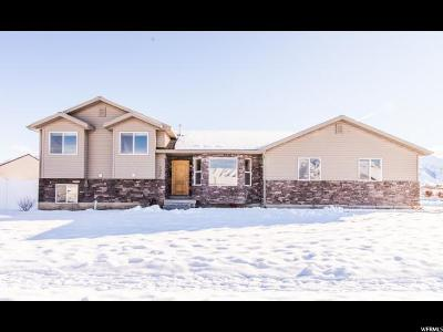 Nibley Single Family Home For Sale: 3008 S 1000 W